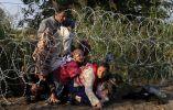 Inmigrantes sirios cruzan debajo de una reja de alambre de espino para entrar en Hungría en la frontera con Serbia, cerca de Röszke, Hungría. 27 de agosto, 2015. REUTERS