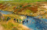 Mistaken Point en Canadá. Situado en el extremo suroriental de la isla canadiense de Terranova, este sitio fosilífero se extiende a lo largo de una estrecha franja de 17 km. de longitud formada por acantilados abruptos.