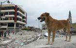 Foto: Archivo Vistazo, Manabí
