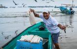 Otros protagonistas en el proceso de la creación de estos platos, son los pescadores artesanales del litoral ecuatoriano que contribuyen a llevar el pescado y los mariscos frescos a su mesa: